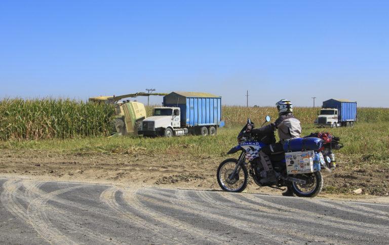 Conrad Agrar Consulting Corn Harvest California
