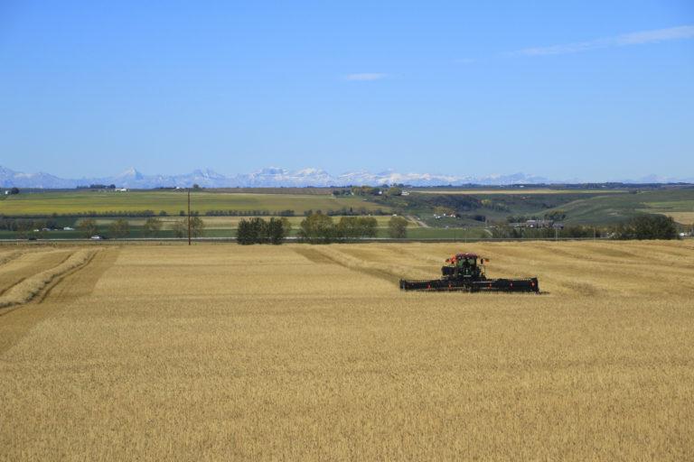 Conrad Agrar Consulting Windrower Canada Alberta